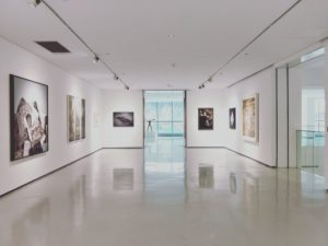 paintings in the gallery