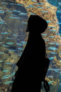 Image of a man standing in front of a large aquarium
