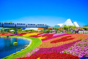 moving from Boston to Orlando - parks in Orlando
